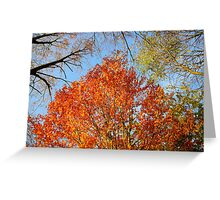 Autumn in colors Greeting Card