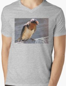 Barn Swallow Mens V-Neck T-Shirt