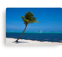 The Beach At Southern Cross Canvas Print