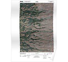 USGS Topo Map Washington State WA Stray Gulch 20110411 TM Poster