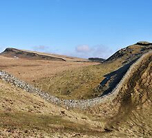 Hadrian's Wall at Clew Hill by Joan Thirlaway