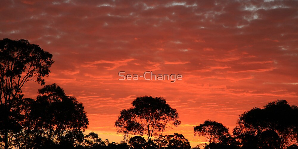 Oh Mother Nature, how wonderful you are!! by Sea-Change