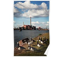 The harmonious co-existence of seagulls and power plant Poster