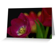 Tulips Together Greeting Card