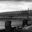 Harbour Walls by Lou Wilson