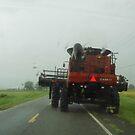 Hurricane Isaac-1...Farmers-0 by WildestArt