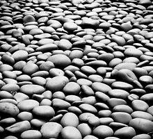On the Rocks by Don Schwartz