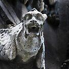 gargoyle, Notre Dame, Paris by lastgasp