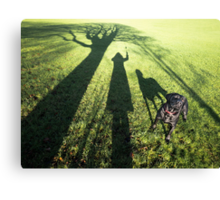 My dog filby in the Park Canvas Print