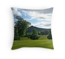 View from the Gardens of Pittodrie House  Aberdeanshire Throw Pillow