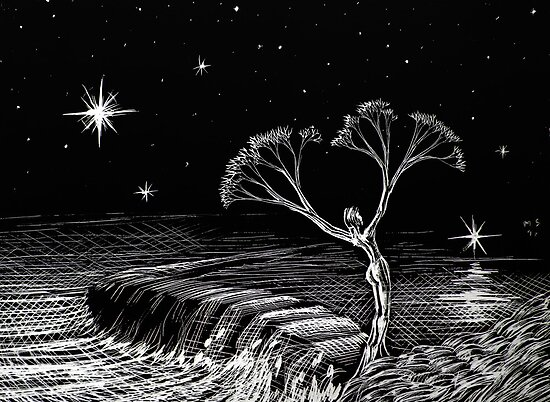 she tree by Matthew Scotland
