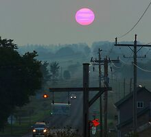 Pink Sunrise by Greta  McLaughlin