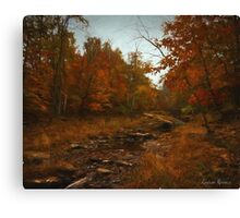 Bucks County Gold Canvas Print