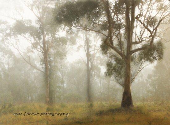 Wilberforce Morning Mist © Vicki Ferrari by Vicki Ferrari
