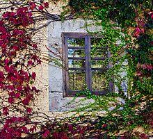 Spanish Window by Don Schwartz