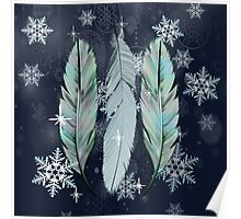 Feathers in the Winter Sky Poster
