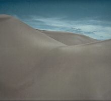 Silently Among the Sand Dunes by Don Schwartz