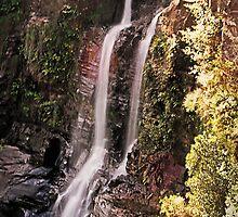Carrington Falls - Budderoo National Park by TonyCrehan