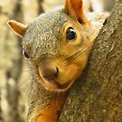 I See You!! by lorilee