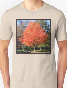 Showstopper ~ A Maple in Fall Glory Unisex T-Shirt