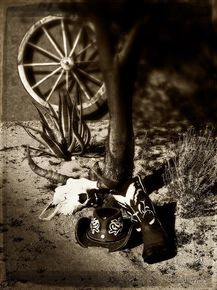 Relics of the Wild West by Lucinda Walter