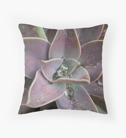 Desert Bloom 2 Throw Pillow
