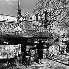 BW France Paris Notre Dame Cathedral booksellers 1970s by blackwhitephoto