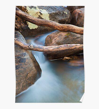 Brush Creek Detail Poster