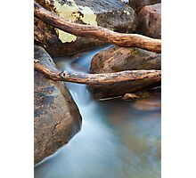 Brush Creek Detail Photographic Print