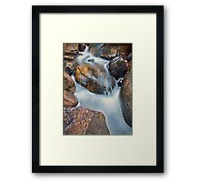 Brush Creek Detail 2 Framed Print