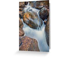 Brush Creek Detail 2 Greeting Card