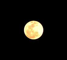 Full Moon by tiffany87