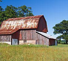Old Barn in Michigan by Kenneth Keifer