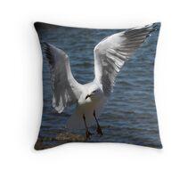 Silver Gull Prepares to Land Throw Pillow