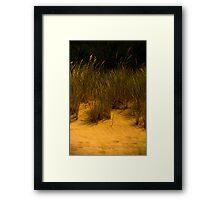 Grass and Dunes Framed Print