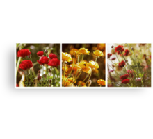 Flowers in Spring ~ A Triptych Canvas Print