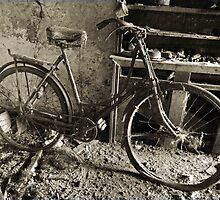 The Bicycle. by Fred Taylor