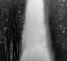 BW France palace of Versailles obelisk fontain 1970s by blackwhitephoto