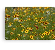 English Meadow # 1 Canvas Print