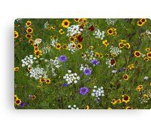 English Meadow # 2 Canvas Print