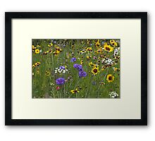 English Meadow # 3 Framed Print
