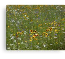 English Meadow # 4 Canvas Print