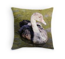 Baby Swan  N02 Throw Pillow