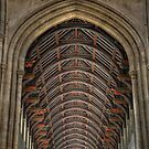 Arches by PinkK