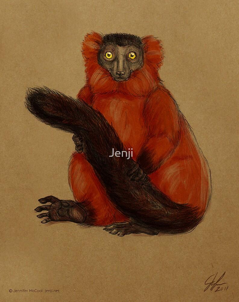 Ruffed Lemur by Jenji