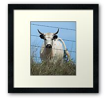 The Fence Between Us Framed Print