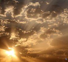 Sunny Sunrise by Jerry Dorado Alcantara