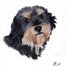 Rudi. Cheeky little mongrel dog by Pencilpastel