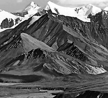 BW USA Alaska Mt Mckinley national park 1970s by blackwhitephoto