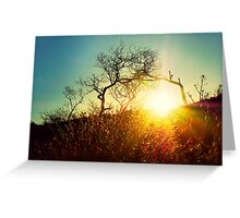 Here comes the sun..... Greeting Card